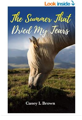 The Summer That Dried My Tears Book