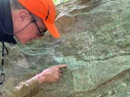 Dennis P. Waters, lichenologist