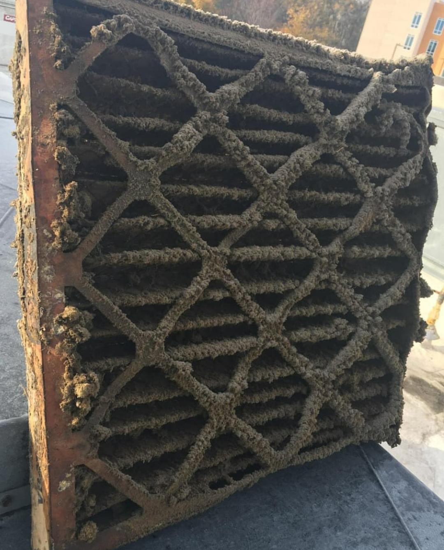 Gross Nasty Air Filter