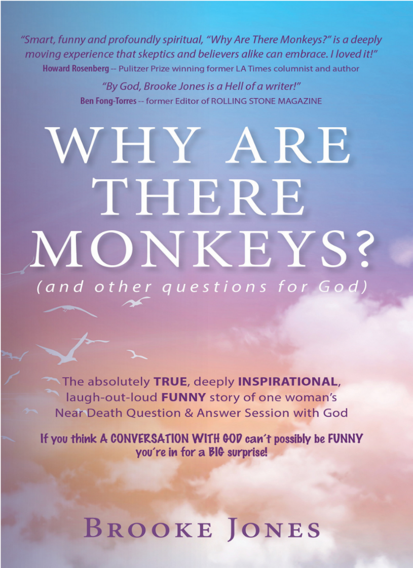Why are there monkeys?