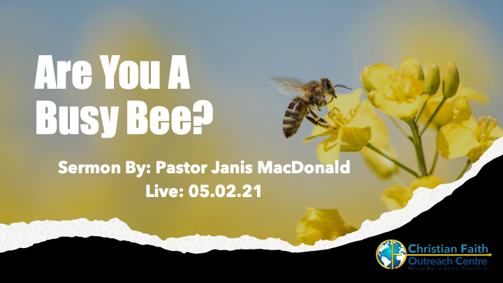 Are You A Busy Bee?