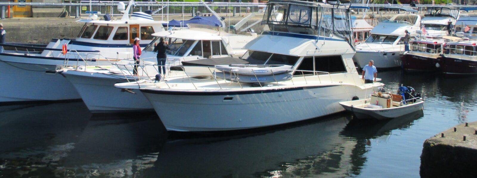 Seattle Easter Boat Parade, Sea Captains, Yacht Crew, Superyachts PNW, Cruising, PNW Boats, Seattle WA, Salty Dog Boating