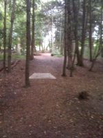 Lower Cato Falls County Park Disc Golf Course