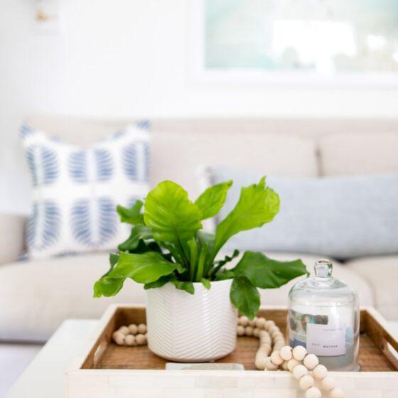 best beach home interior designer manhattan beach CA-5-min
