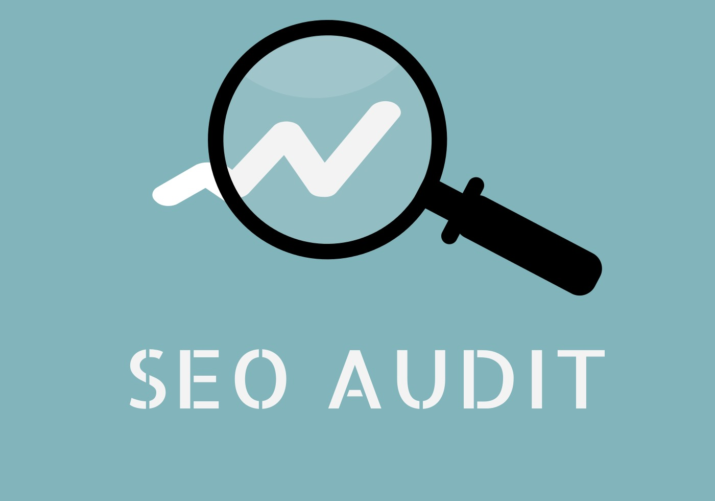 SEO Audit Special