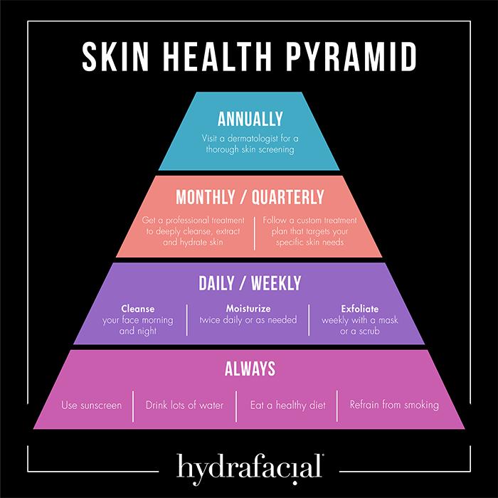 skin pyramid chart