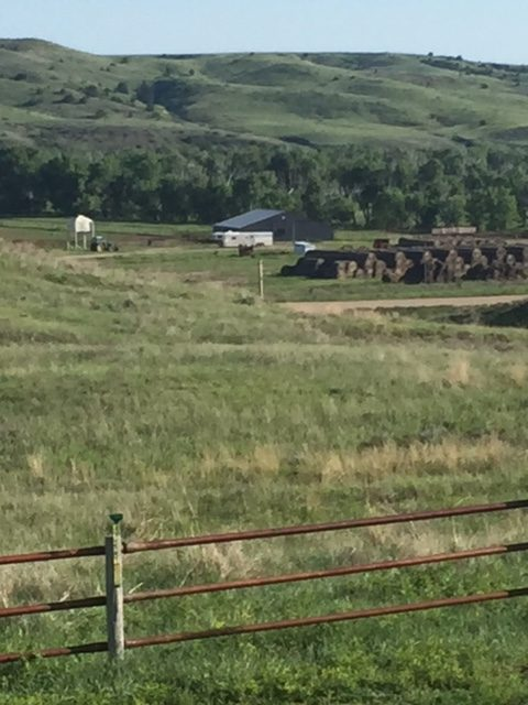 Vicki Hebb's ranch on the Cheyenne River Sioux Reservation in South Dakota.