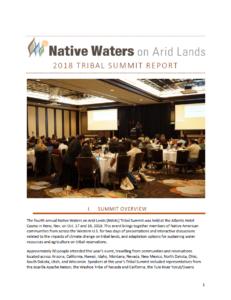 2018 Tribal Summit Report