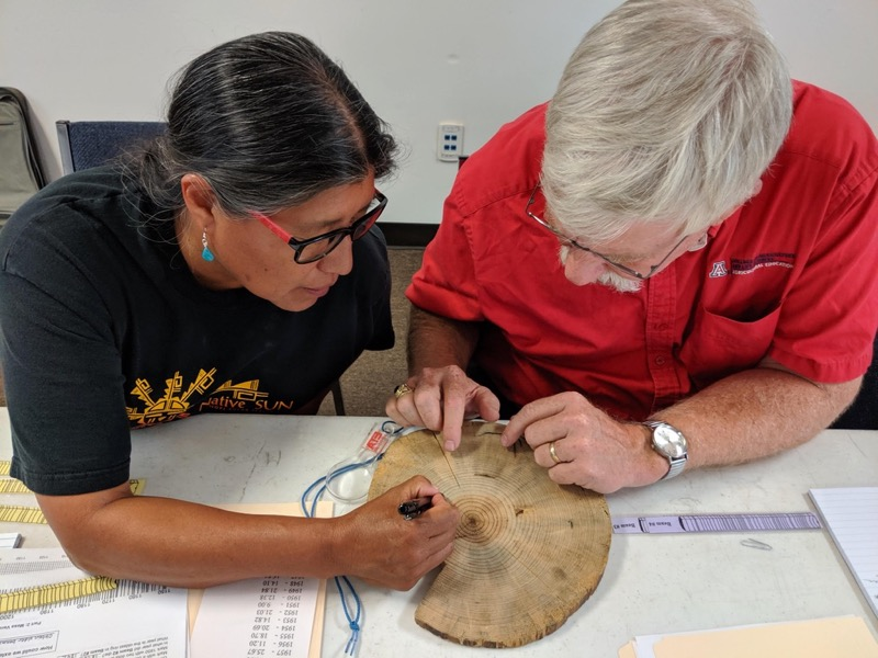 Class participants count tree rings