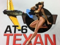 AT-6-Texan-100-Percent-Polyester-ST350