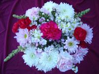 16 Stem Mixed Flower Bouquet Image
