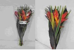 Bouquet #2 Image
