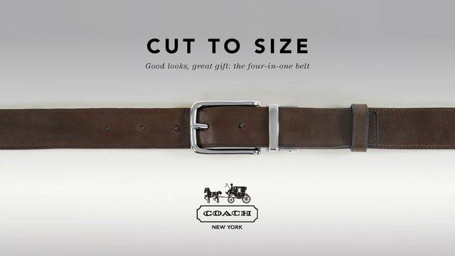 Coach – Cut to Size