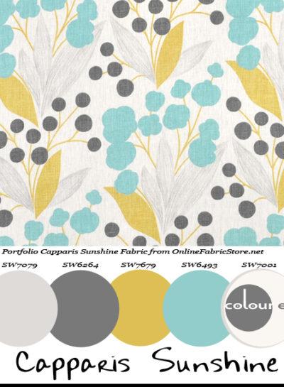 Paint Palettes {Capparis Sunshine}