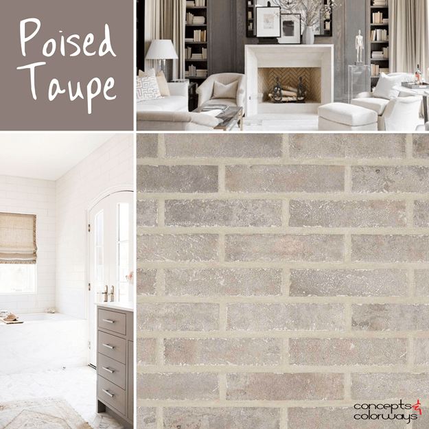 sherwin williams poised taupe mood board