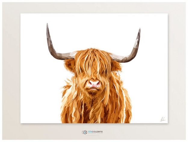 highland cow digital painting