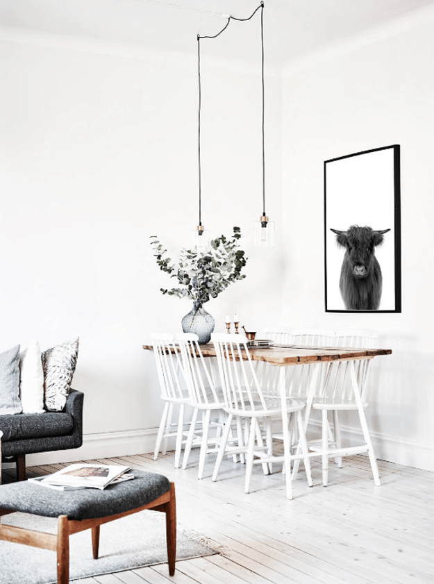 black and white highland cow photograph in white room