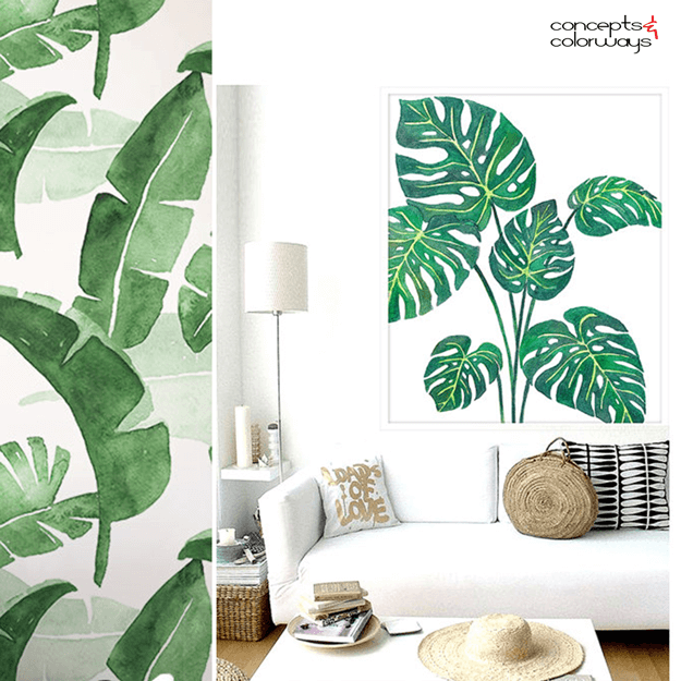 palm fronds and banana leaves design element