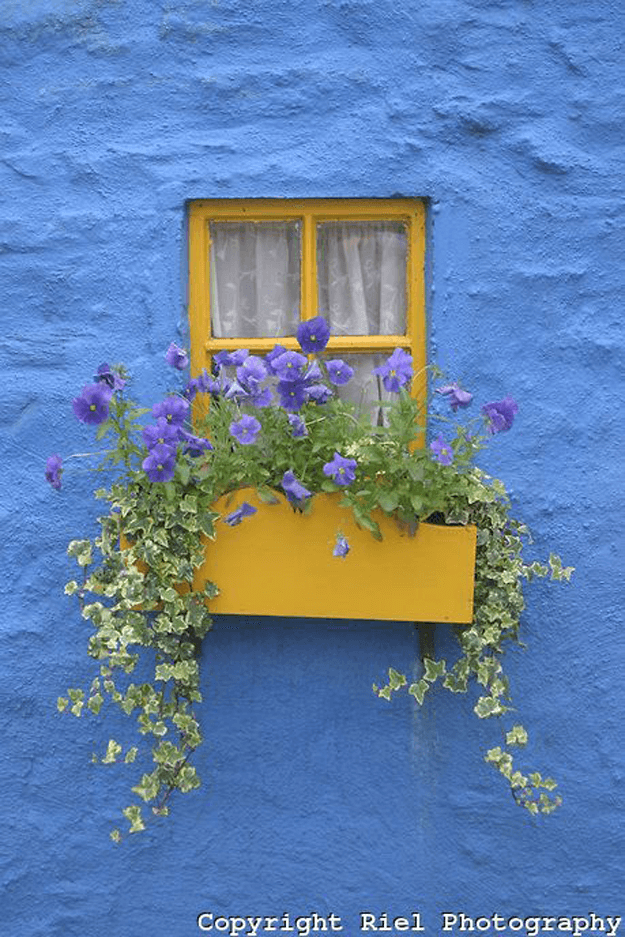 bright yellow window in bright blue wall