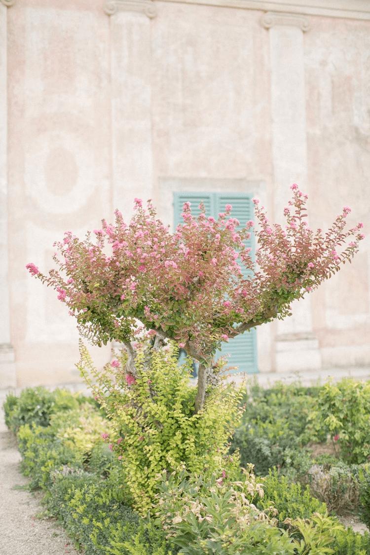 aqua blue, blooming garden, blush pink, blush pink walls, bubblegum pink, dark green, pink and green, pink blooms, sage green, turquoise blue