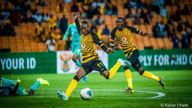 Photo of Amakhosi celebrate Africa Day