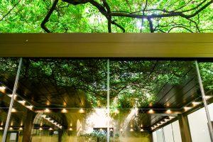 Identità Golose Milano verdant patio