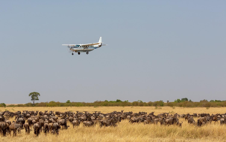 Masai-mara-flying-package