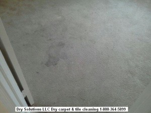 dirty carpet 01