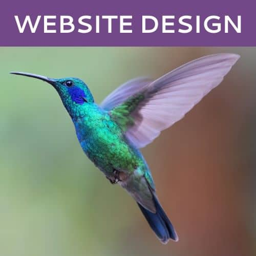 Website Design by Hummingbird Marketing in Seattle and Cleveland