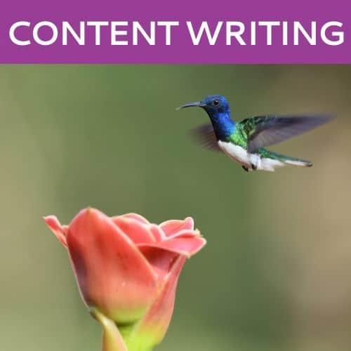 Content Writing by Hummingbird Marketing in Seattle and Cleveland