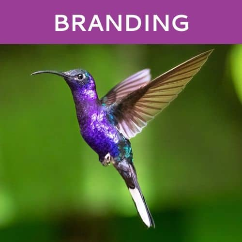 Branding by Hummingbird Marketing in Seattle and Cleveland
