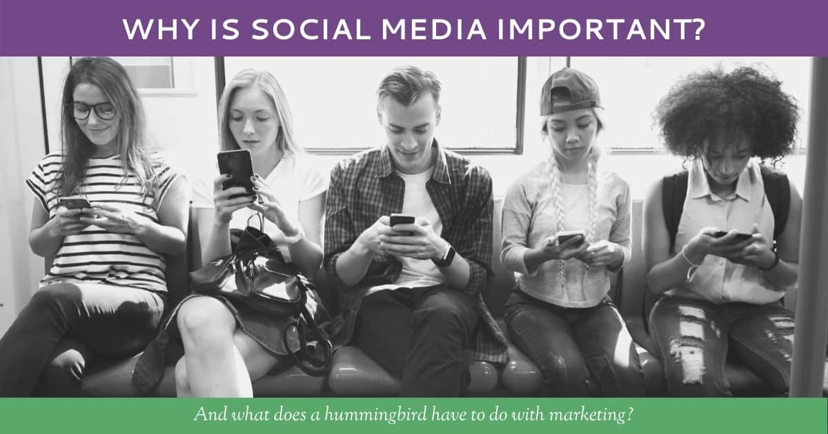 Why Is Social Media Important? by Hummingbird Marketing Services