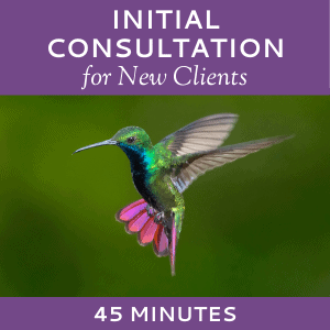 Schedule an Initial Consultation with Hummingbird Marketing Services (for New Clients)