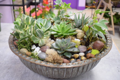 Succulent Planter, $165