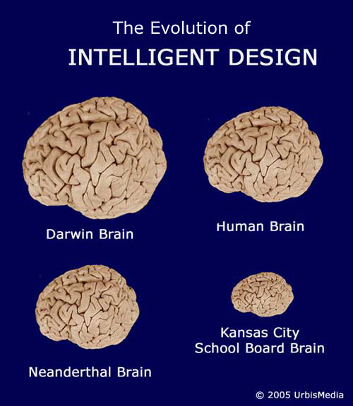 V020-05_intel-design-brain