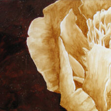 "Angel Sarkela-Saur created this original ""Beautiful Details"" Coffee Art® painting. It features a beautiful close up of the rose petals."