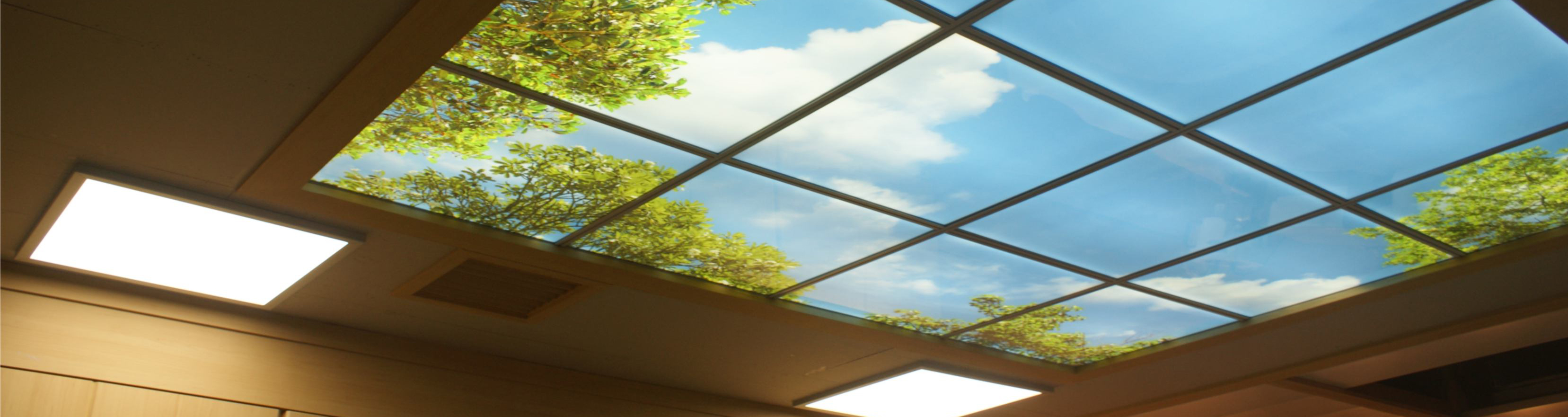 banner ceiling-graphics