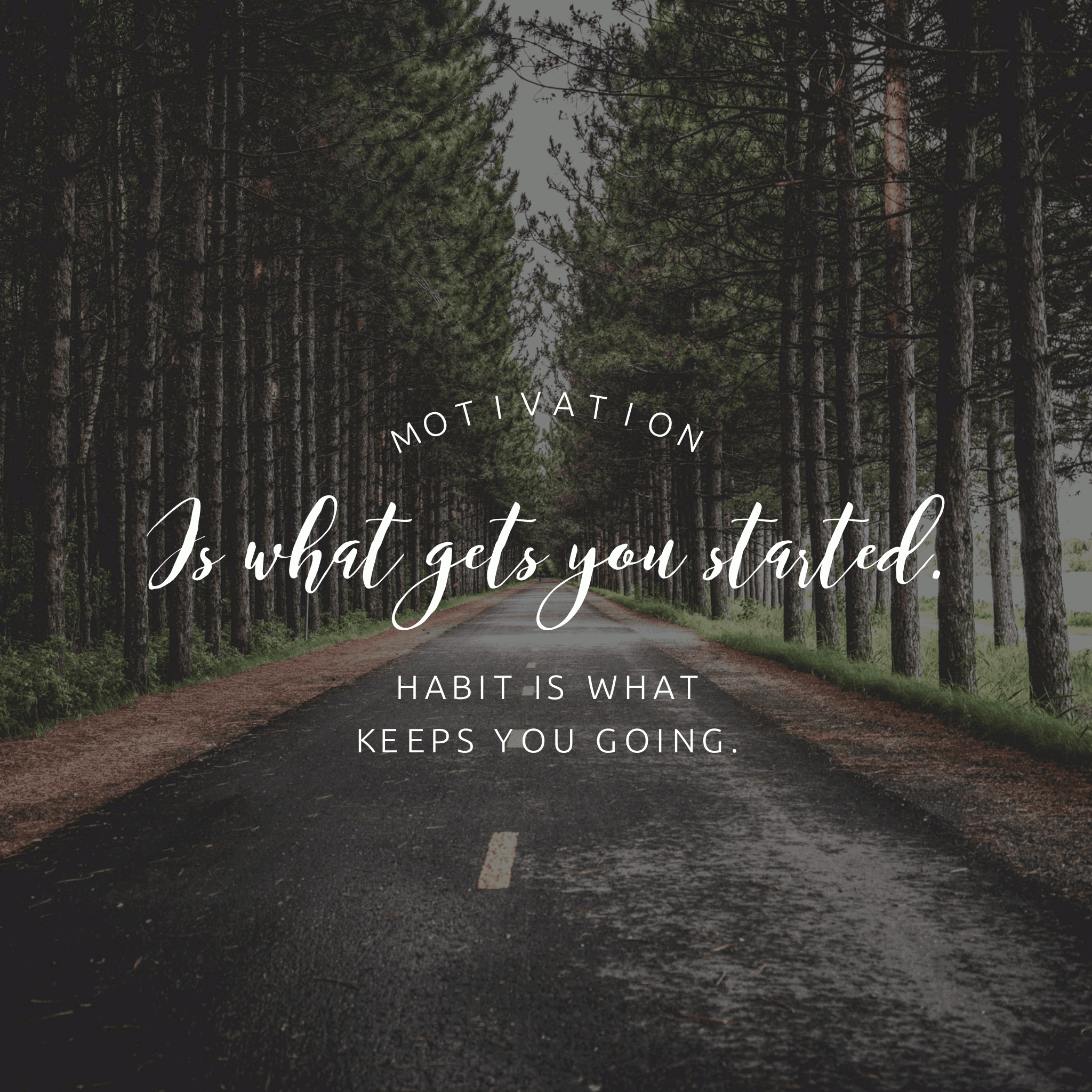 Motivation Is What Gets You Started, Habit Keeps You Going