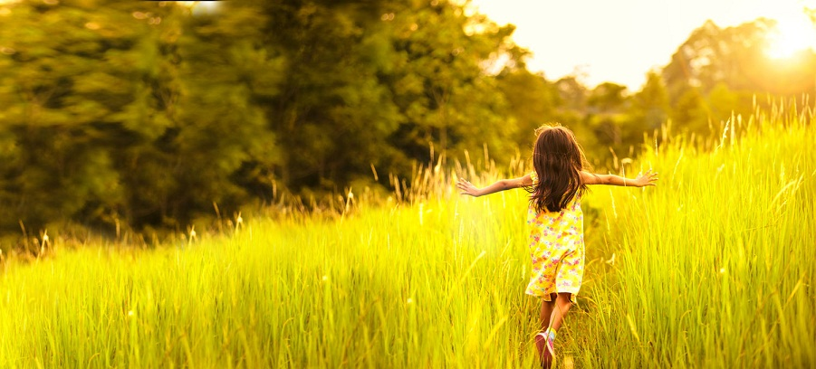 child-in-meadow-image-retouch-work-v022