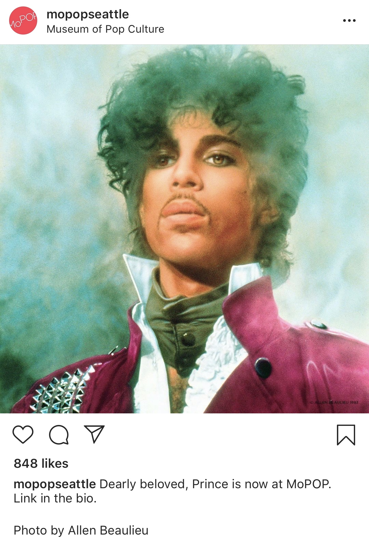 Prince_Instagram_Organic_Adrienne_Clark