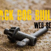 Black Dog Salvage Builds