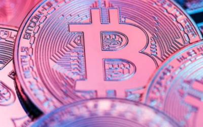 Bitcoin Investment Training