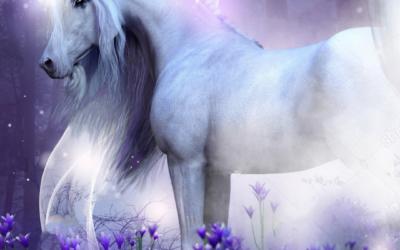Faries and Unicorns
