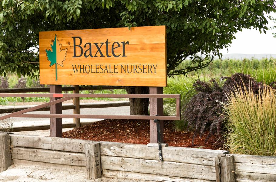 Baxter Nursery_138_2