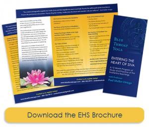 EHS-Brochure