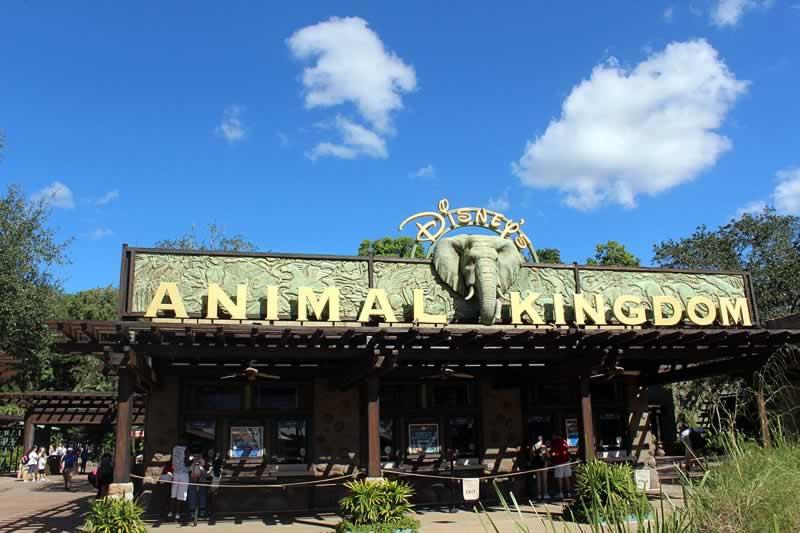 entrada do parque animal kingdom da disney em orlando