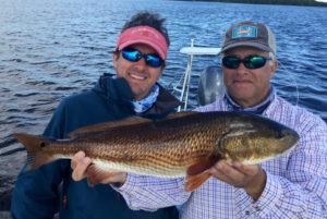 Dark redfish on the fly in Boca Grande, FL