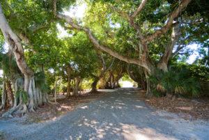Banyan Street Boca Grande Florida