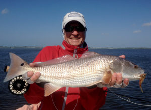 A cool day redfish caught on the fly in Boca Grande, FL