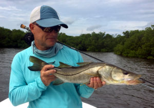 Snook caught fly fishing